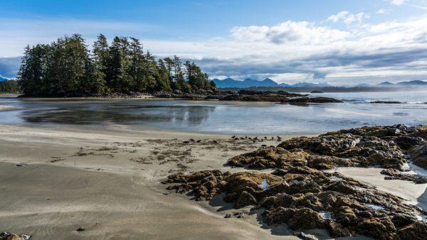 beach airbnb tofino