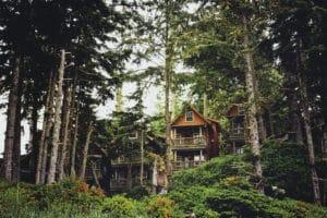Sasquatch property management