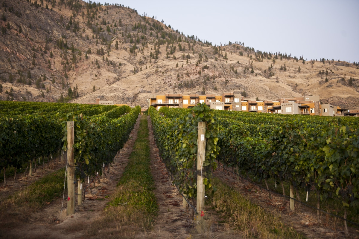 property management in osoyoos