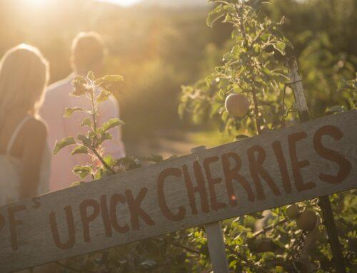 BC's Best Farm Airbnbs