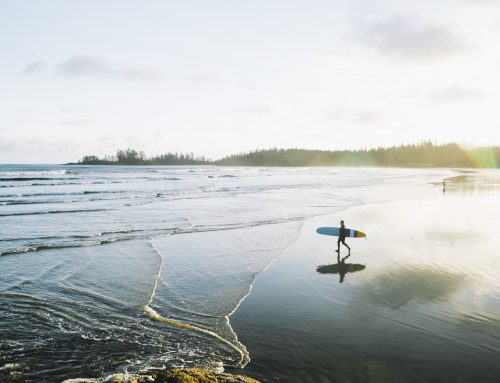 Vancouver to Tofino | Top Pacific Rim Highway Stops